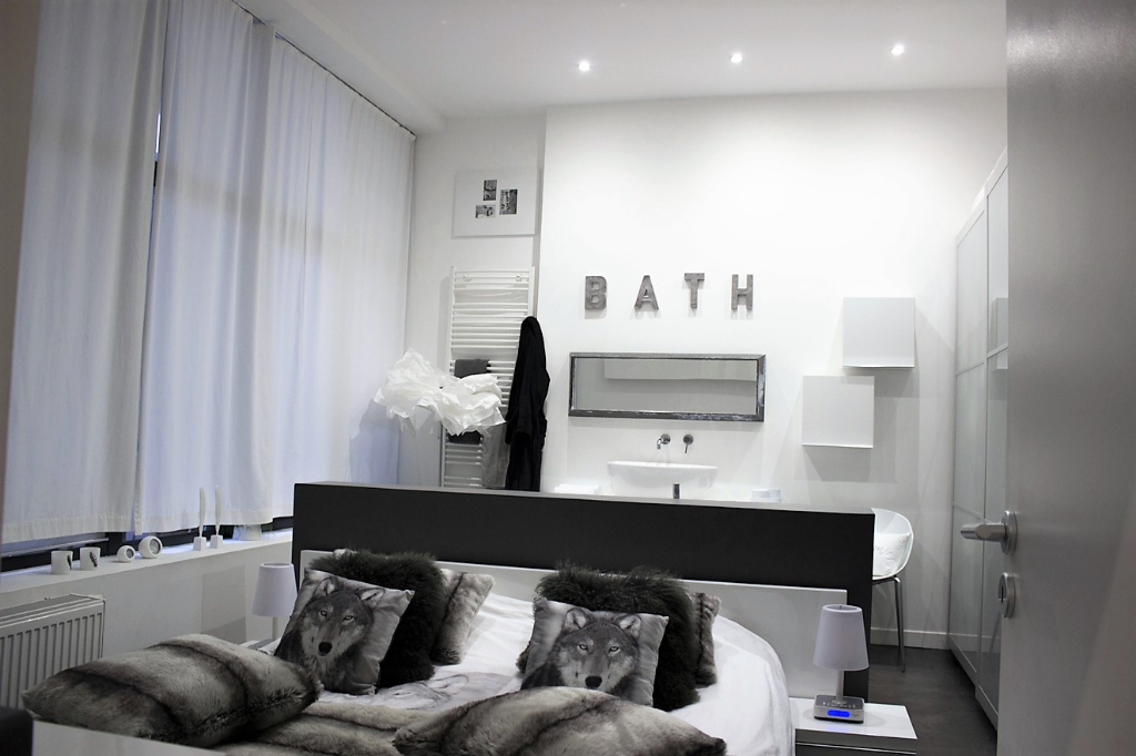 Splendide appartement style Loft - Lille Centre